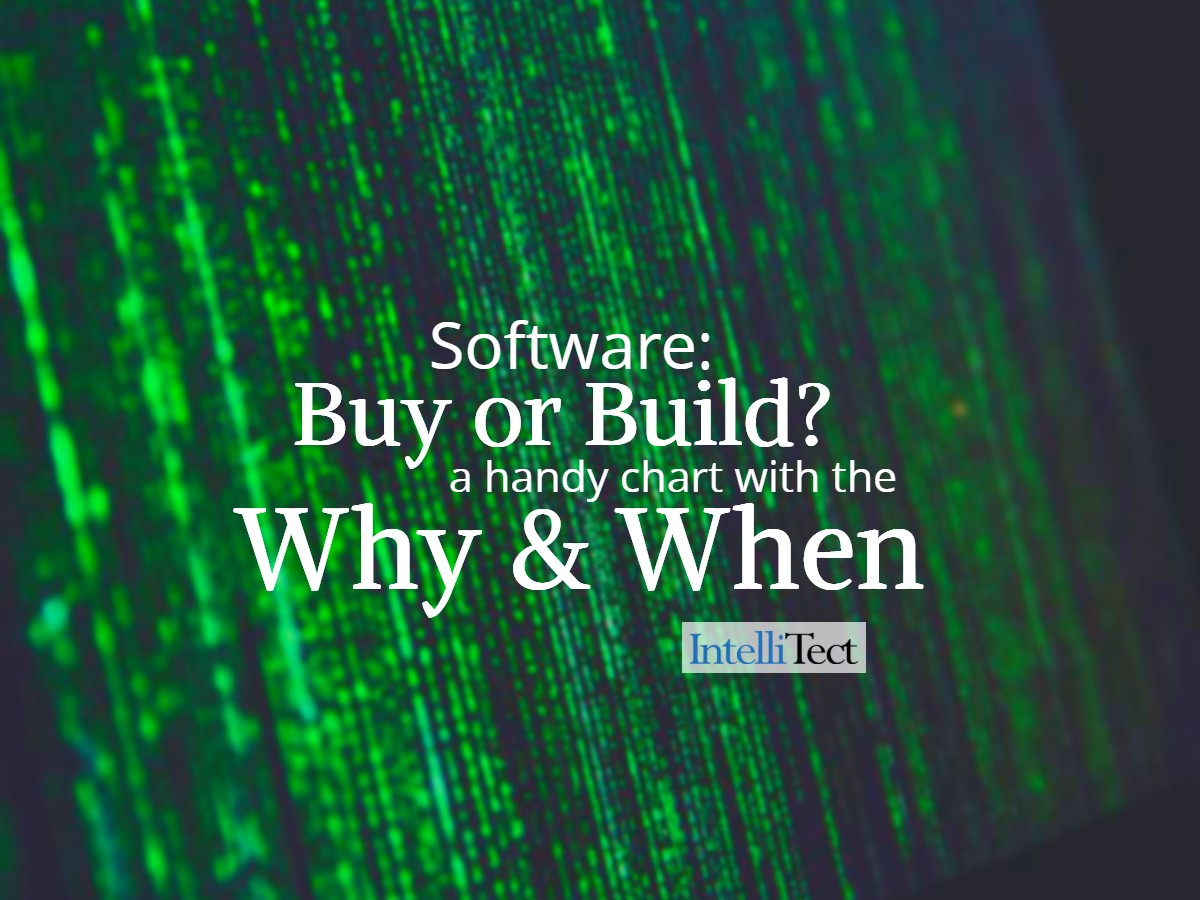 Software: Buy or Build?