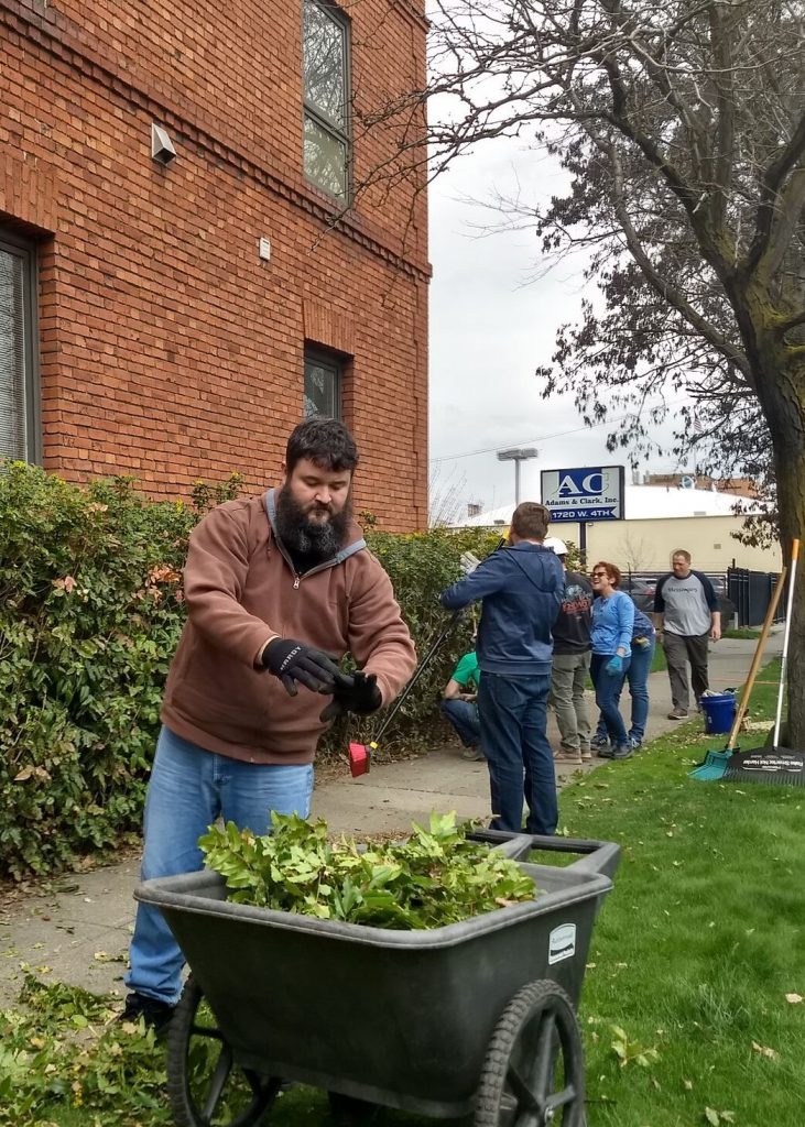 A group of people do yard work to trip and clean up a hedge beside a building on the sidewalk
