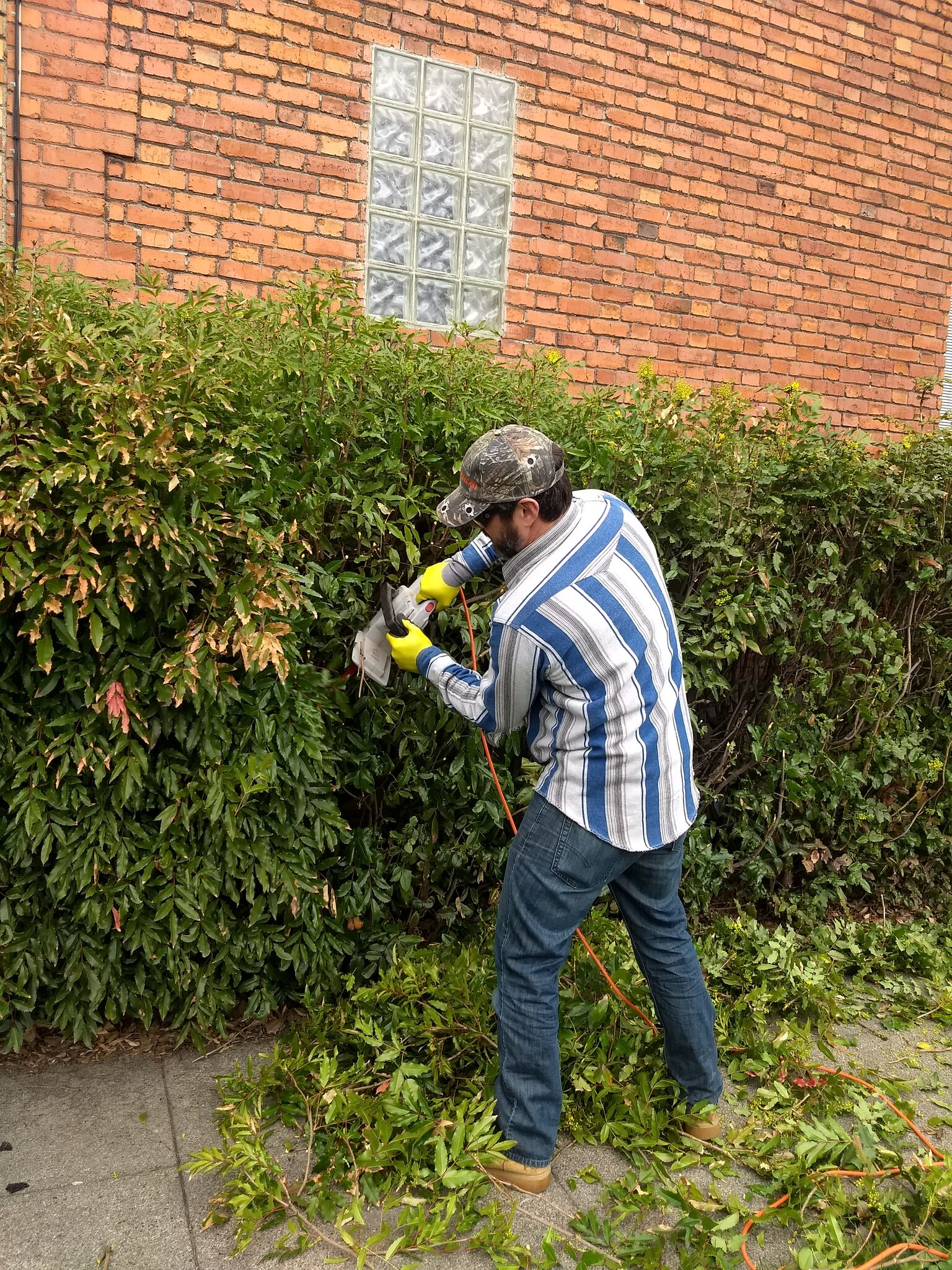Man in baseball cap wears gloves and sunglasses while he uses a power hedge trimmer