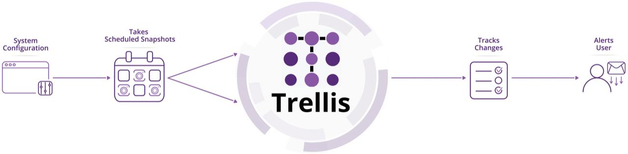 Trellis software application work flow chart